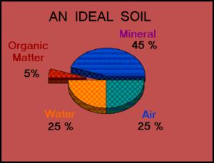 solul ideal pentru lavanda